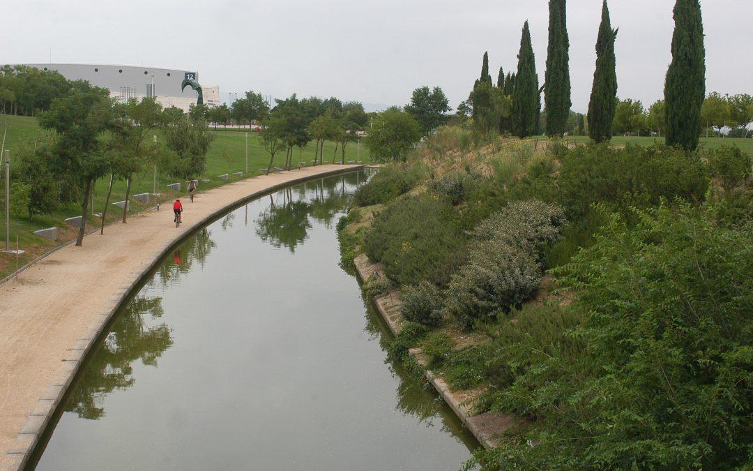 Se reanuda la actividad náutico deportiva en la lámina de agua del Juan Carlos I